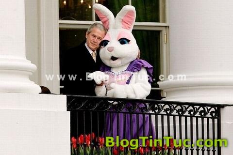 Tổng thống Bush